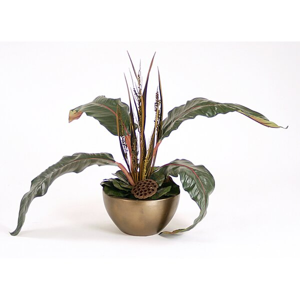 Natural Lotus Pots, Bahia Spears, Bird of Paradise Leaf Floor Plant in Pot by Distinctive Designs