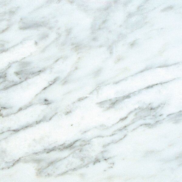 18'' x 18'' Marble Field Tile in Arabescato Carrara by MSI