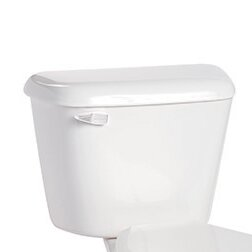 Alto Lined 1.6 GPF Toilet Tank by Mansfield Plumbing Products