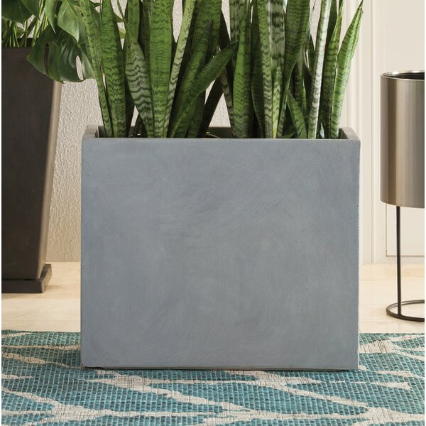 Silsbee Modern Concrete Planter Box by Greyleigh