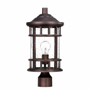 Find the perfect Cowell 1-Light Lantern Head By Darby Home Co
