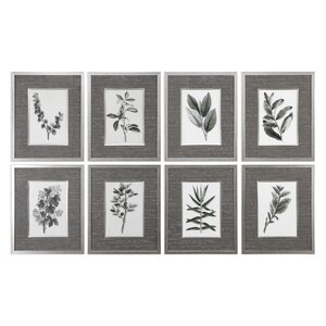 Leaves 8 Piece Framed Graphic Art Set by Darby Home Co