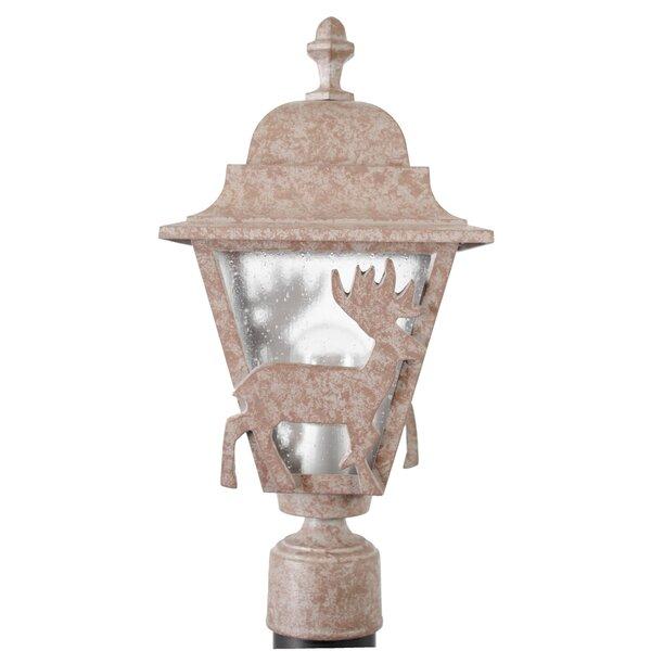 Penfield Deer Series 1 Light 18 Post Lantern by Alcott Hill