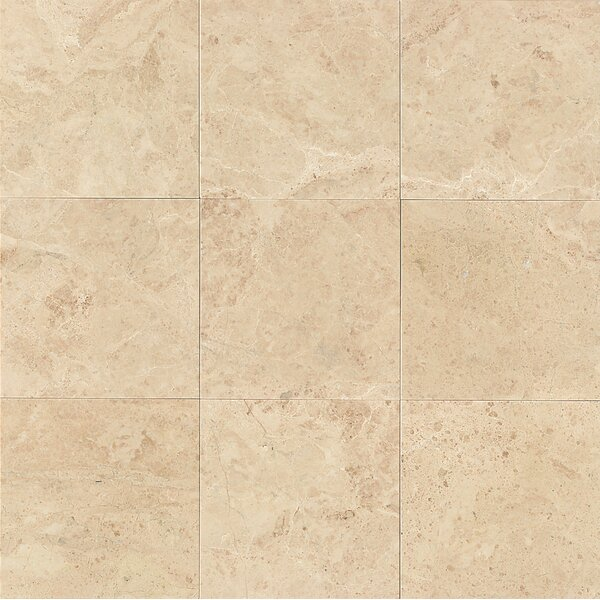 12 x 12 Marble Polished Tile in Cappuccino by Grayson Martin