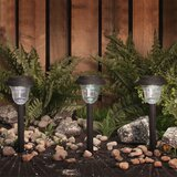 Farmhouse Rustic Landscape Lighting
