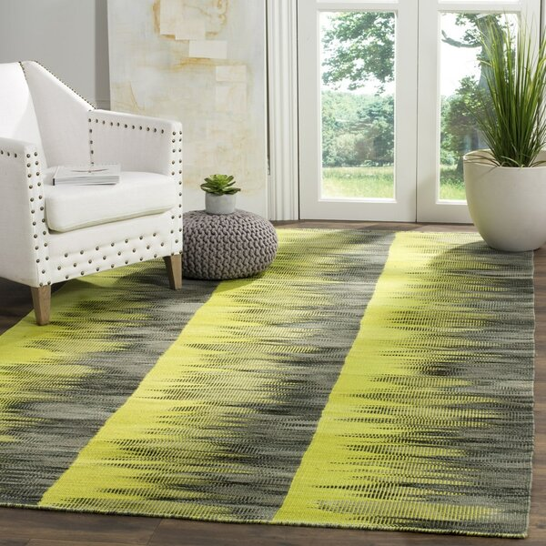 Amerina Hand-Woven Green/Charcoal Area Rug by Latitude Run
