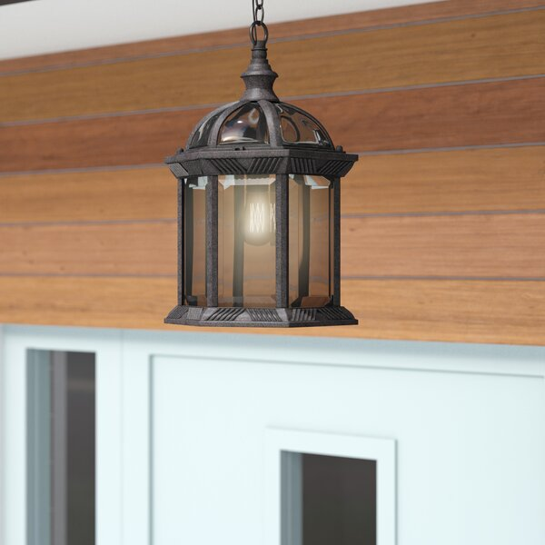 Newbrook 1-Light Outdoor Hanging Lantern by Bay Isle Home