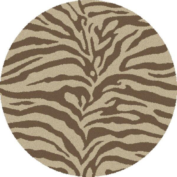 Shaggy Zebra Brown & Tan Area Rug by Threadbind
