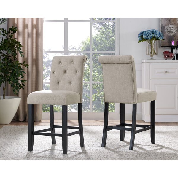 Niall Side Chair (Set of 2) by Darby Home Co
