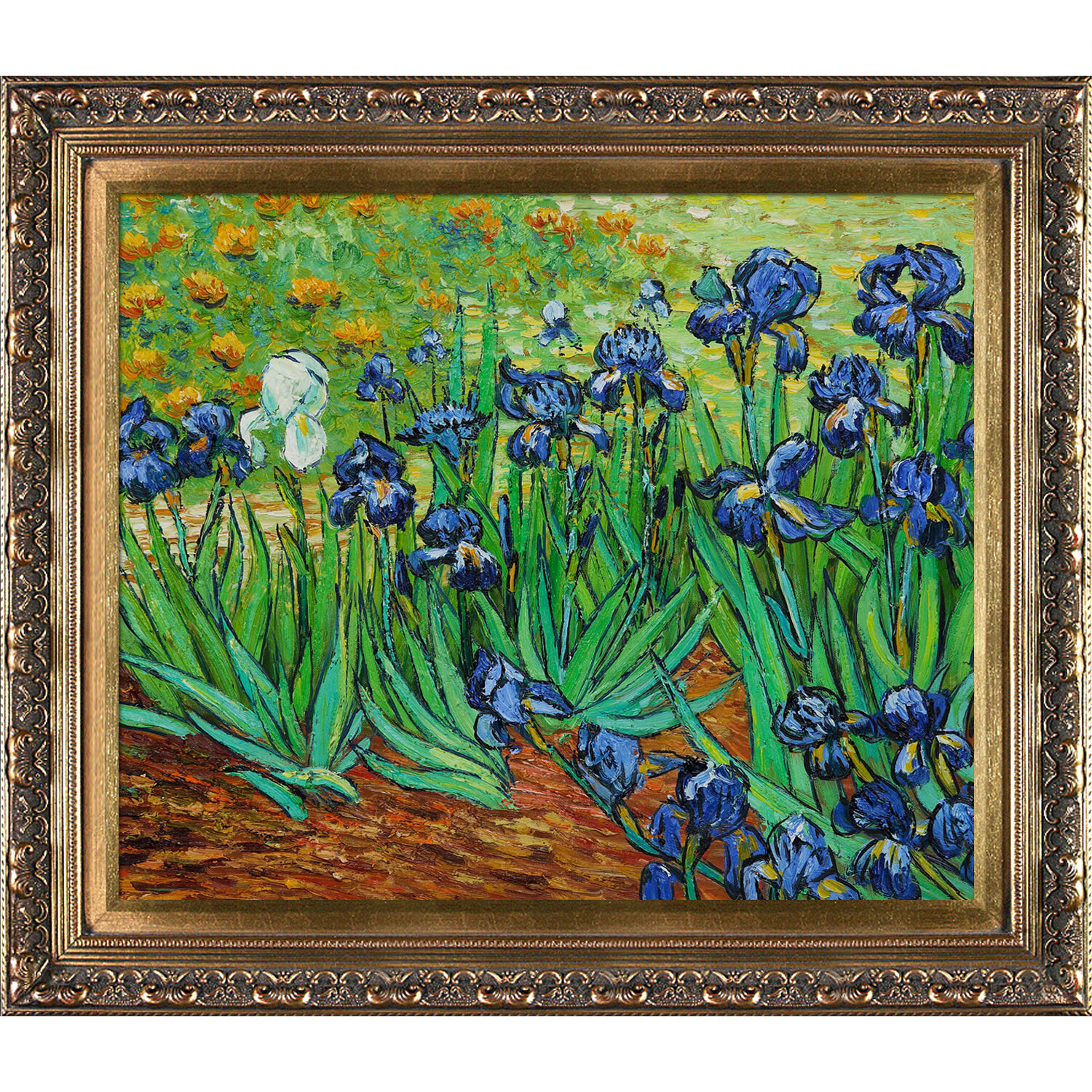 Tori home irises by vincent van gogh framed painting reviews tori home irises by vincent van gogh framed painting reviews wayfair reviewsmspy