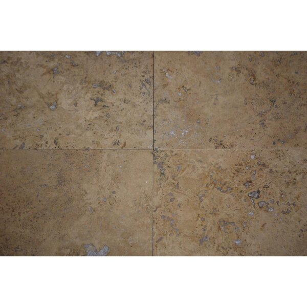 Walnut Travertine 18 x 18 Travertine Field Tile