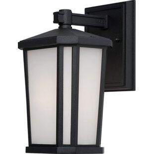 Compare prices Esters 1-Light Outdoor Wall Lantern By Brayden Studio