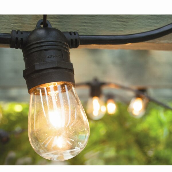 Vintage Commercial Patio String Lights with 12 Edison Light Bulbs by Hi-Line Gift Ltd.