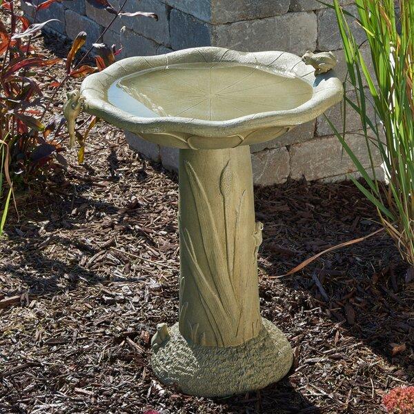Acadia Birdbath by Smart Living