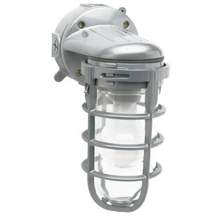 Affordable Canyonlands 1-Light Outdoor Sconce By Trent Austin Design