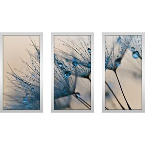Flower Water Droplets 2 3 Piece Framed Graphic Art Set by Picture Perfect International