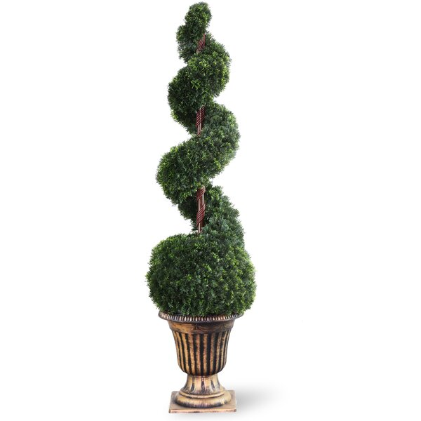 Spiral Cedar TopiaryTree with Ball in Urn by National Tree Co.