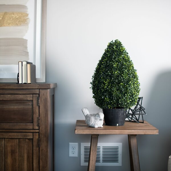 Inherently Flame Retardant Floor Boxwood Topiary in Pot by Fleur De Lis Living