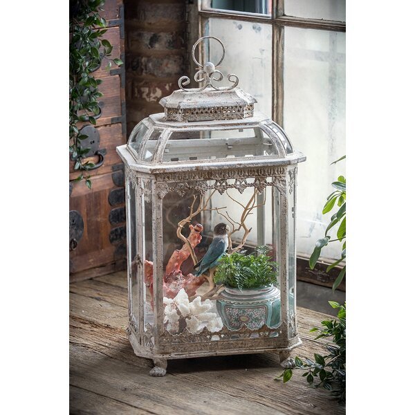 Culpeper Mixed Metal and Glass Terrarium by Ophelia & Co.