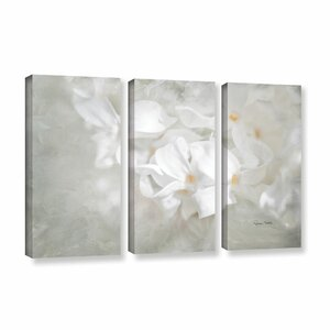 White Lilac I 3 Piece Photographic Print on Gallery Wrapped Canvas Set by Alcott Hill