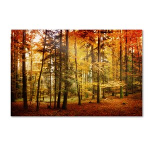 Brilliant Fall Color Photographic Print on Wrapped Canvas by Charlton Home