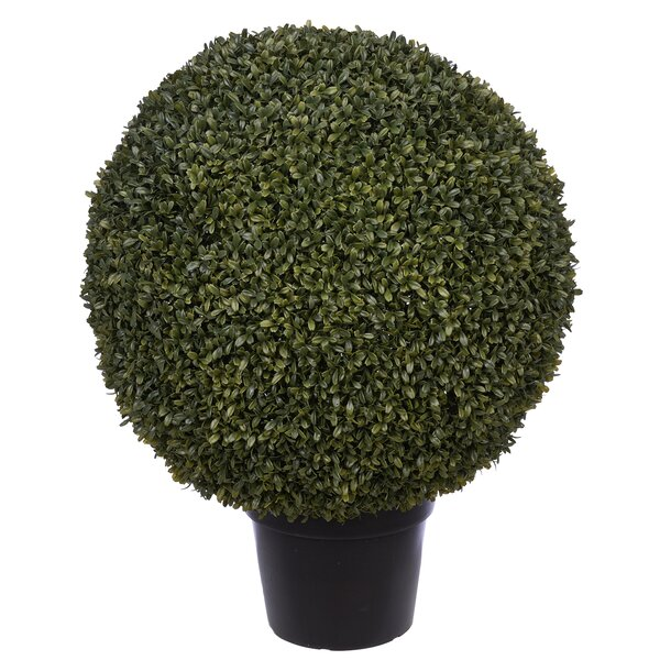 Artificial Ball Floor Boxwood Topiary in Pot by Charlton Home
