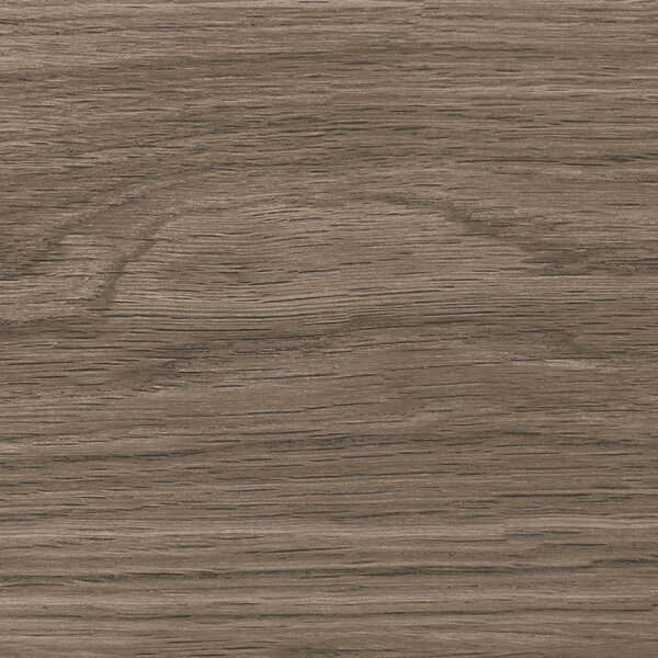 Manor 6 x 36 Porcelain Field Tile in Brown by Madrid Ceramics