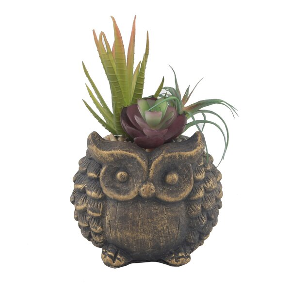 6.5 Desktop Faux Succulent Plant in Owl Pot by Aug
