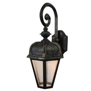 Best Reviews Flannigan 1-Light Outdoor Wall Lantern By Charlton Home
