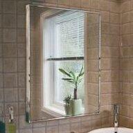 Newland Bathroom/Vanity Mirror by Andover Mills