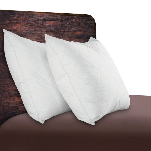 Quilted Natural Comfort Down Feather Standard/Queen Pillow (Set of 2) by Sealy