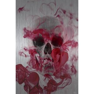 'Skull 2' by Parvez Taj Painting Print on Brushed Aluminum by Parvez Taj