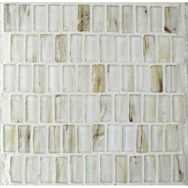 Seashell 1 x 2 Glass Mosaic Tile in White by Tile Focus
