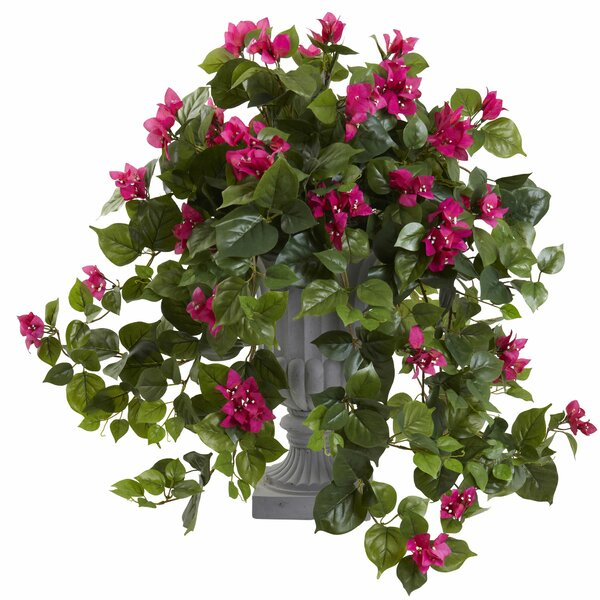 Bougainvillea Arrangement in Urn by Nearly Natural