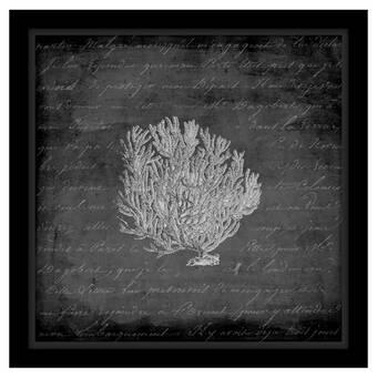 Ashton Wall Décor Llc Kingfisher Ii Framed Photographic Print On Wrapped Canvas Wayfair