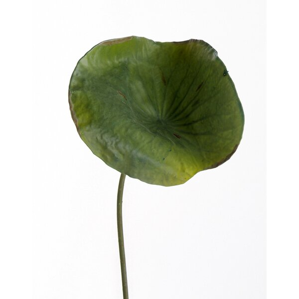 DIY Foliage Artificial Medium Lotus Leaf (Set of 6) by Distinctive Designs