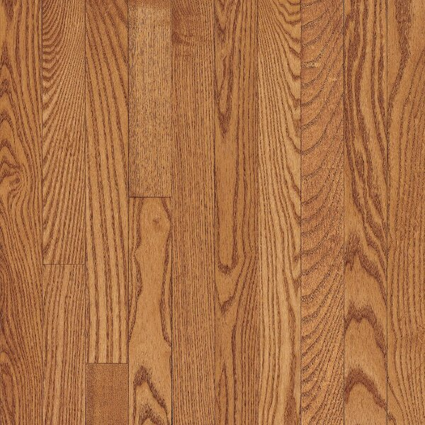 Westchester 3-1/4 Solid Oak Hardwood Flooring in Butterscotch by Bruce Flooring