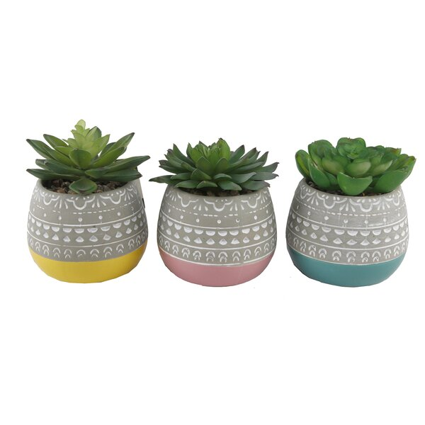 2 Tone Floral Pattern Desktop Succulent Plant by Bungalow Rose