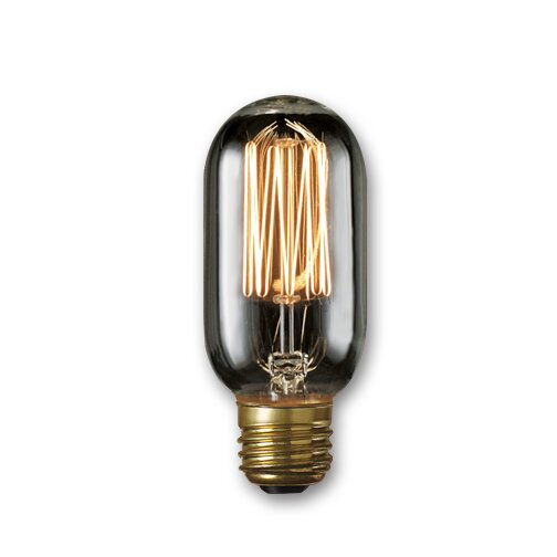 40W Smoke Incandescent Light Bulb (Set of 5) by Bulbrite Industries