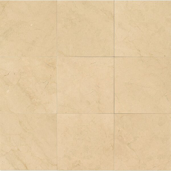18 x 18 Marble Field Tile in Crema Marfil Select by Grayson Martin