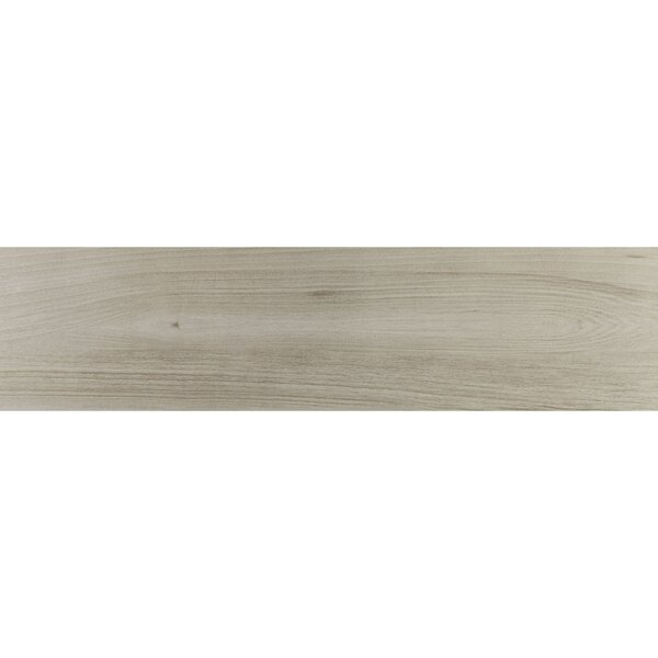 Bridgeport 9 x 36 Porcelain Wood Look Tile in Willowgrove by Itona Tile