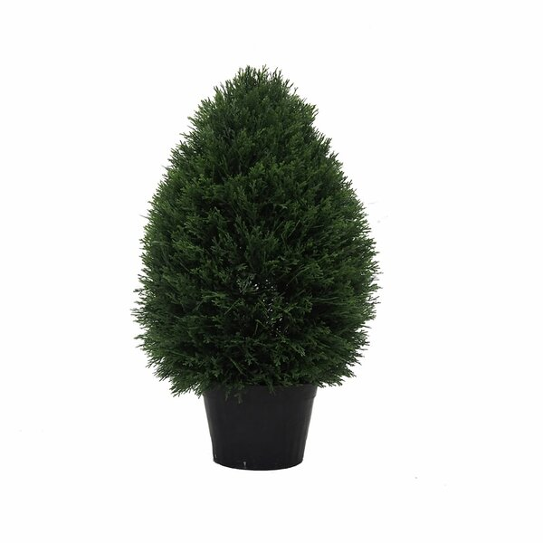 Inherently Flame Retardant Floor Cedar Topiary in Pot by Fleur De Lis Living
