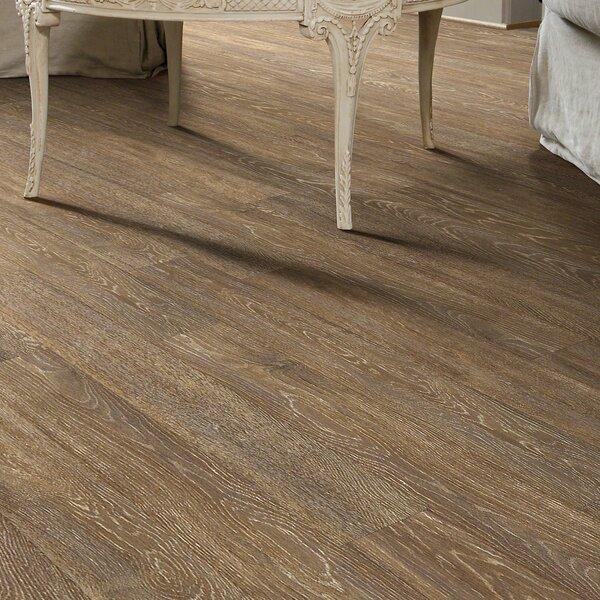 Agape 5 x 48 x 10mm Laminate Flooring in Family Tree by Shaw Floors