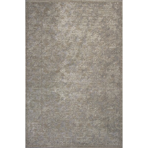 Timeless Champagne Tranquility Area Rug by Donny Osmond Home