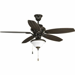 Find 54 Rand 5-Blade Patio Ceiling Fan By Red Barrel Studio