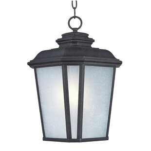 Big Save Melrose 1-Light Outdoor Hanging Lantern By Darby Home Co
