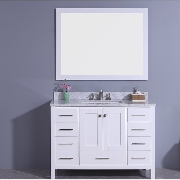 Bluebird 49 Single Bathroom Vanity Set with Mirror by Winston Porter