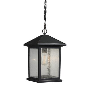 Online Reviews Leroy 1-Light Outdoor Hanging Lantern By 17 Stories
