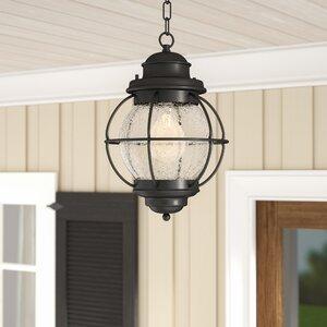 Cason 1-Light Outdoor Hanging Lantern