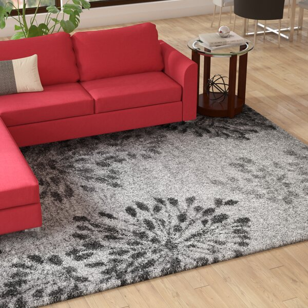 Thalia Gray Shag Area Rug by Latitude Run